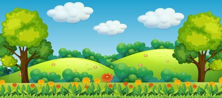 Paisagem de natureza lindo de verão vetor