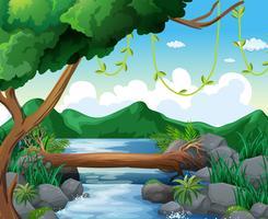 Cena de fundo com rio na floresta vetor