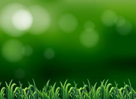 Uma grama no fundo do borrão vetor