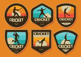 Pacote de vetores de crachá de jogador de críquete