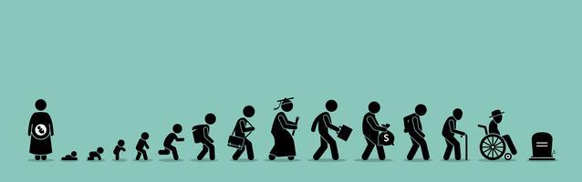 Ciclo de vida e processo de envelhecimento.