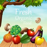 Design de cartaz com muitos legumes vetor
