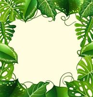 Design de moldura com folhas verdes vetor