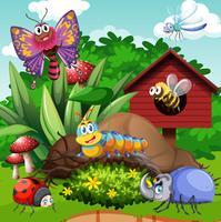 Diferentes tipos de insetos no jardim vetor