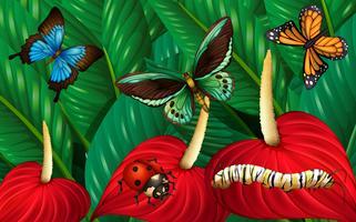 Borboletas e outros insetos no jardim vetor
