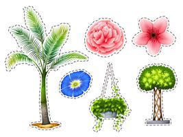 Adesivo definido com diferentes tipos de plantas vetor