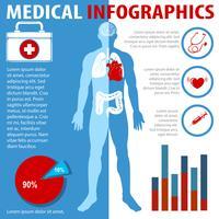 Infografia médica com texto e anatomia vetor