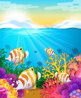 Cena, com, peixe, sob, a, oceânicos vetor