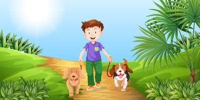 Menino, levando, cachorros, para, passeio, parque vetor