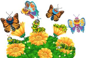Lagartas e borboletas no jardim vetor