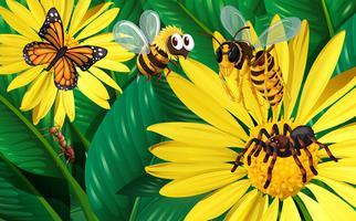 Diferentes tipos de insetos voando em torno de flores amarelas