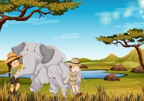 Zookeeper com elefante no zoológico vetor