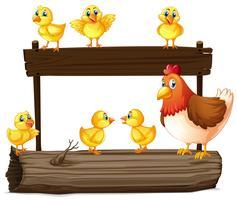 Placa de madeira com galinha e pintinhos