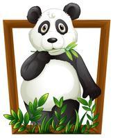 panda vetor