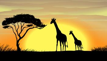 Girafa em uma bela natureza vetor