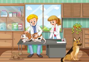 Dois veterinários curando cães no hospital vetor