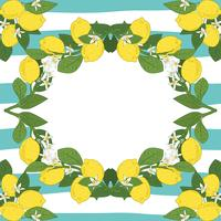 Modelo de cartão com texto. Quadro tropical dos frutos do limão do citrino no fundo linear do azul de turquesa do vintage.