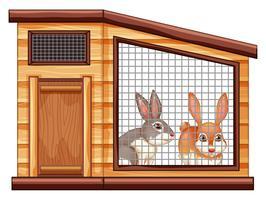 Dois coelhos bonitos na gaiola