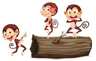 macaco dos desenhos animados vetor