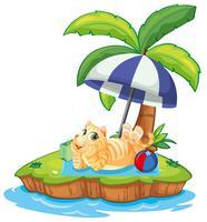 Um gato relaxa na ilha vetor