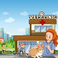 Clínica veterinária com animais de estimação e veterinário vetor