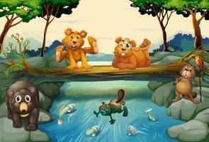 Ursos e outros animais na floresta vetor