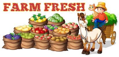 Fazenda produtos frescos e agricultor vetor