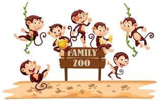 Muitos macacos no signo do zoológico vetor
