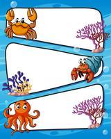 Design de moldura com animais marinhos vetor