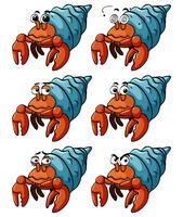 Eremita caranguejos com emoções diferentes