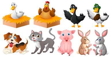 Diferentes tipos de animais de fazenda vetor