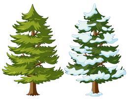 Pinheiro com e sem neve vetor