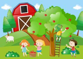 Crianças, colheita, a, maçãs, de, a, árvore vetor