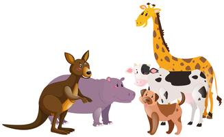 Muitos tipos de fazenda e animais selvagens