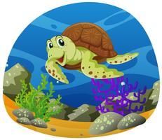 Tartaruga marinha nadando no fundo do mar vetor