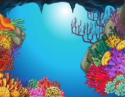 Cena subaquática, com, recife coral, em, caverna vetor