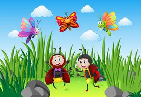 Joaninhas e borboletas no jardim vetor