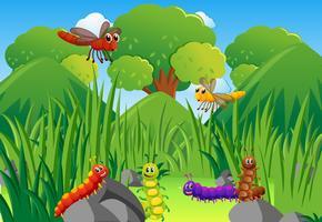 Lagartas e libélulas no jardim vetor