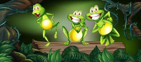 Três sapos dançando no log na selva vetor
