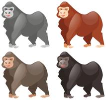 Gorilas em cores diferentes vetor