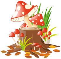 Cogumelos no log vetor