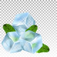 Cubos de gelo realistas e folhas de hortelã. Ilustração vetorial