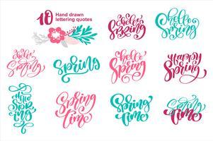 Conjunto de citações Olá Primavera modelo de cartão de tempo. Letras de mão desenhada. Elemento caligráfico para seu projeto. Ilustração vetorial