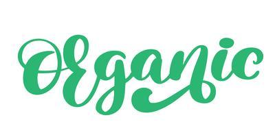 Ilustração isolada calligpaphy do vetor do ícone mão orgânica tirada. Alimento do símbolo do vegetariano da dieta saudável e do estilo de vida. crachá de esboço de mão. lettering logotipo para menu de restaurante vegetariano, café, mercado de fazenda