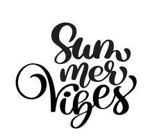 vibrações de verão de caligrafia vetor