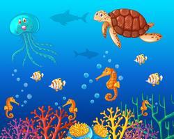 Animais marinhos nadando sob o oceano vetor