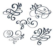 Separador de floreio desenhado mão conjunto vintage