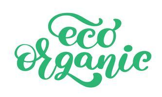 Eco Organic icon hand drawn calligpaphy isolado ilustração vetorial
