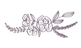 flores modernas desenho e esboço vetor
