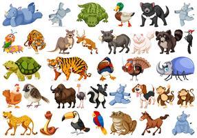 Conjunto de conjuntos de animais vetor